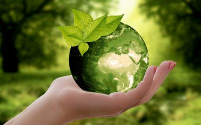 Renewable Energy – Save Money with Less Pollution.